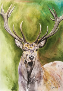 Dignified Being. Watercolour on paper. 42cm x 59.4cm.