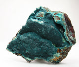 Rosasite Large Blue Green Rare Druse on rock matrix Mina Ojuela Mineral Specimen