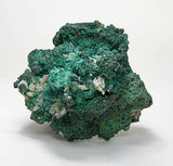 "Dark Green Rosasite on Native Copper and Cuprite , ""Red Metal"" Mineral Specimen,  Mexican Mines"