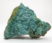 Rosasite Blue Green Rare Crystalline Druse on limonite rock matrix Mexican Mineral Specimen