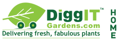 DiggIT Gardens - Delivering Fresh Fabulous Plants!