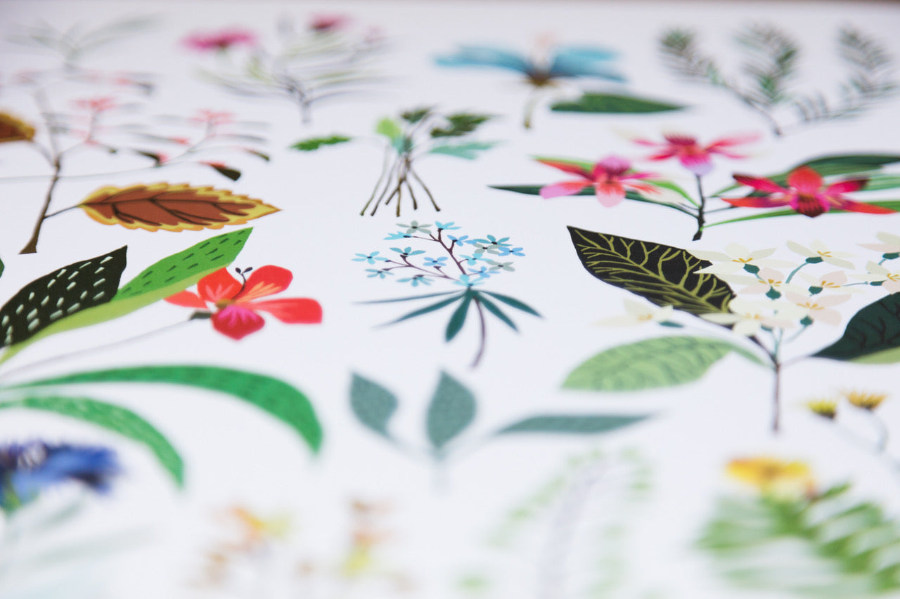 colourful floral pattern designed by Brie Harrison