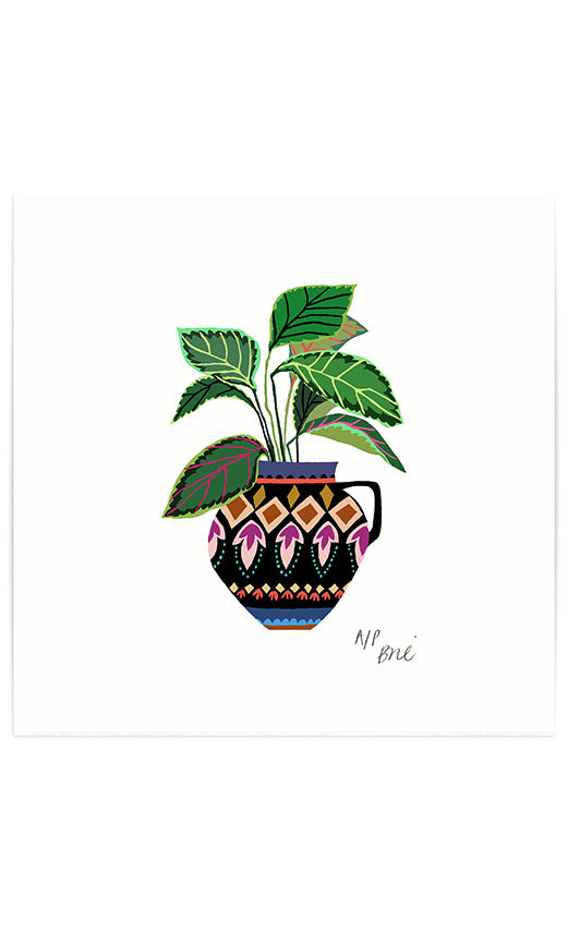 Limited Edition 'Prayer Plant' Giclée Print