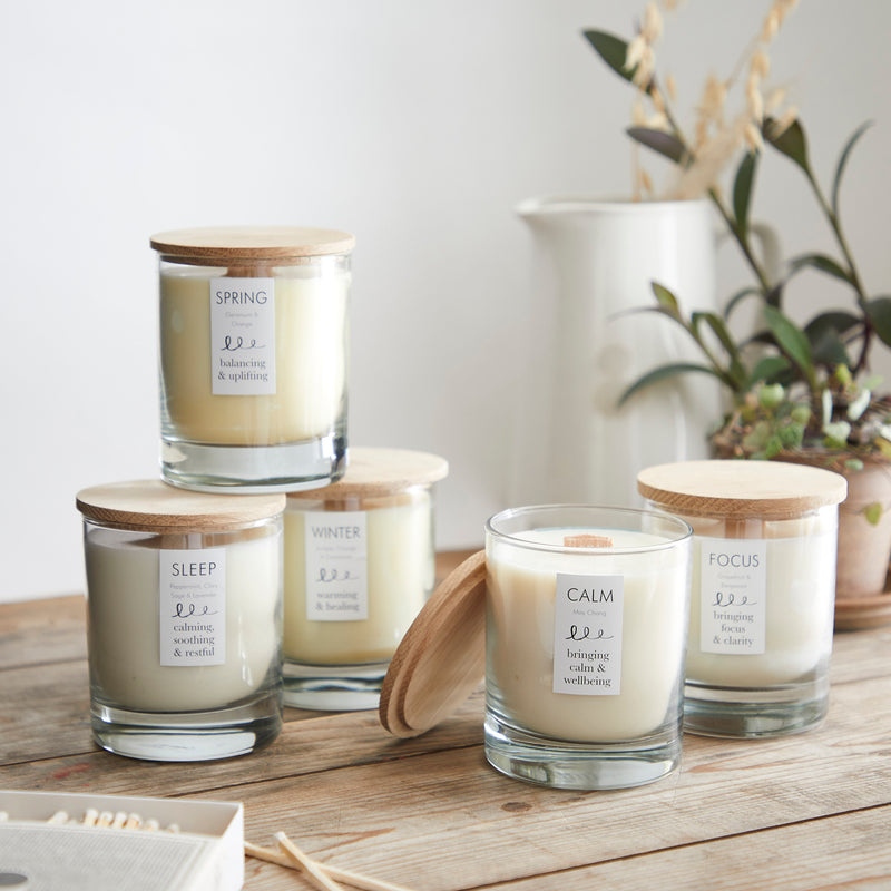 Soy Wax Candle  - Winter