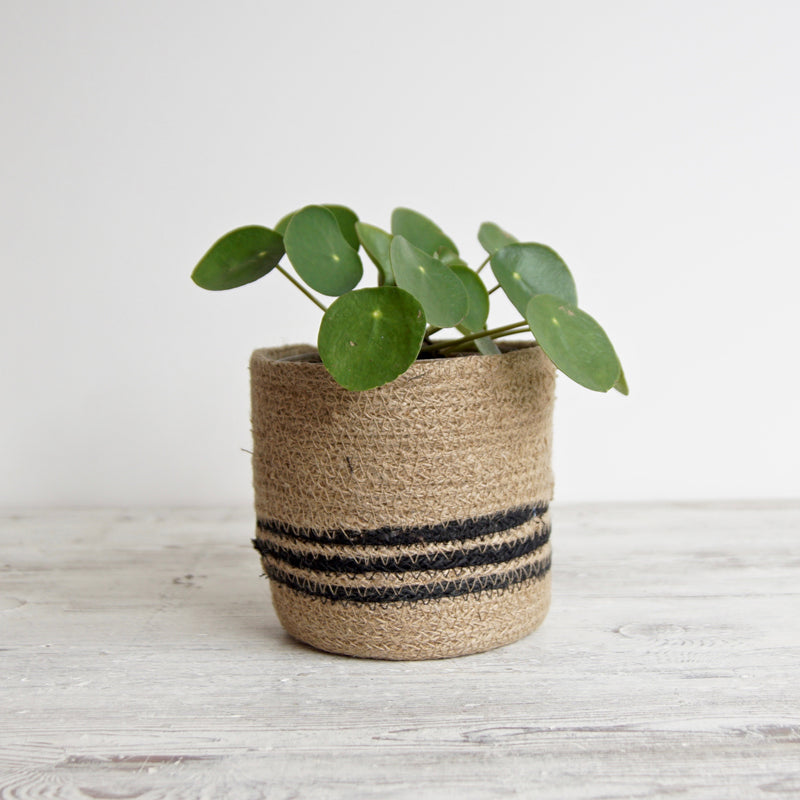 Striped Jute Plant Pot