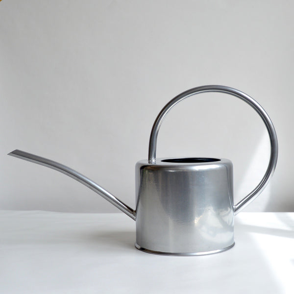 Indoor Silver Watering Can