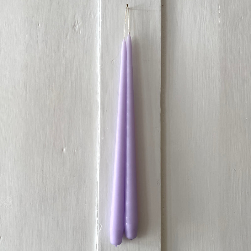 'Robin & Dog' Art School Greetings Card