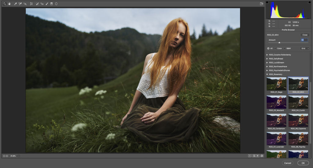 Screenshot of Lightroom Luts with a woman in white in the hills