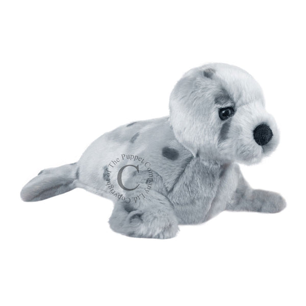 Full Bodied Animal Puppets - Seal