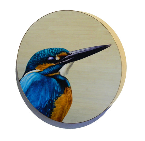 Kingfisher 'circlet' by Ben Timmins