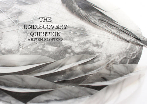 The Undiscovery Question by Arwen Flowers