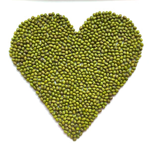 Organic Mung Beans - Sprout Grower