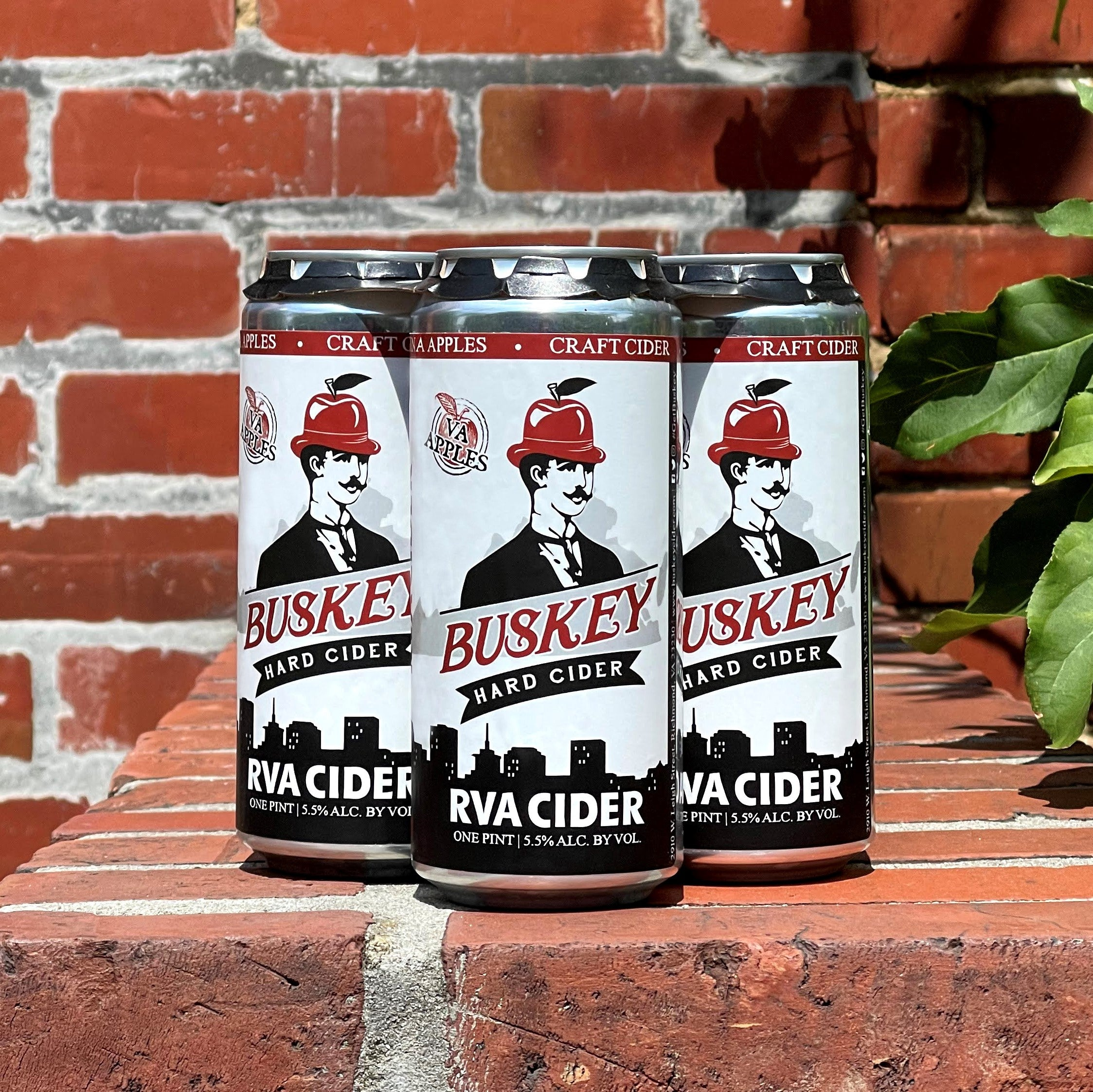 Buskey RVA Cider 6-pack cans