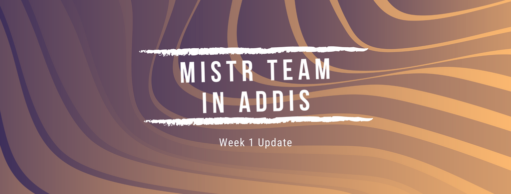 Mistr Team in Addis. Week 1 Update!