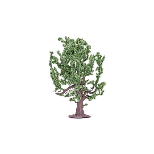 Oak Tree  Qty 6 - R7209 -Available