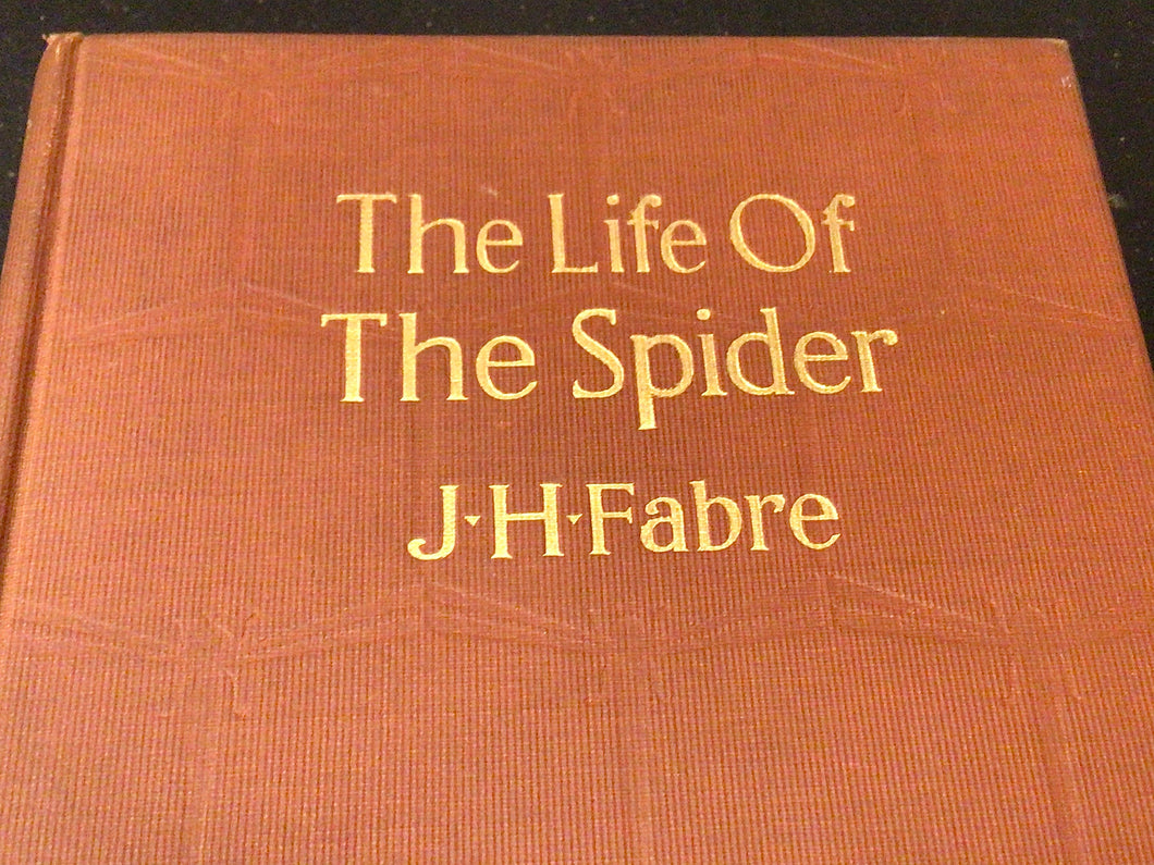 "Antique Book ""The Life of the Spider"" by J.H. Fabre 1917"