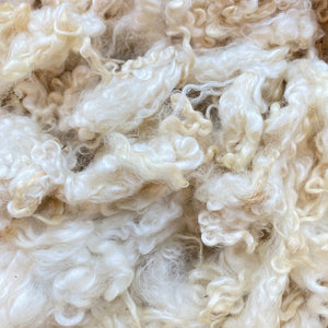 Wondrous Woolerie Natural White Wool Locks 80g