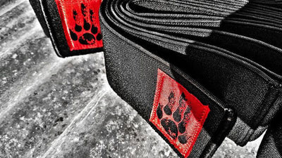 Power Knee Wraps