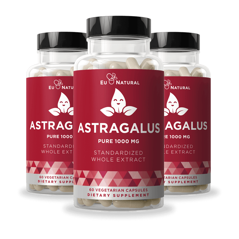 Eu Natural ARMOR 3 ASTRAGALUS PURE 1000 MG Immunity (3 Pack)