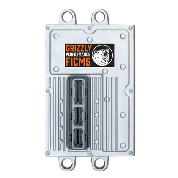 Grizzly Performance FICM 48V  (2003-2007)