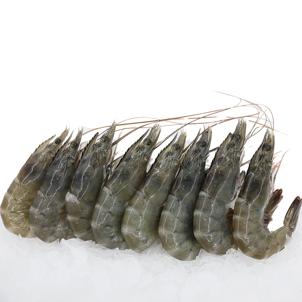 Grey Prawns<p>$2.60/100g<br>Fresh