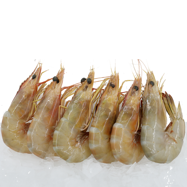 Sea Prawns<p>$2.80/100g<br>Fresh