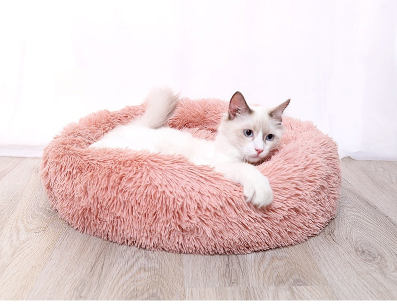 Beds for cats and dogs from plush