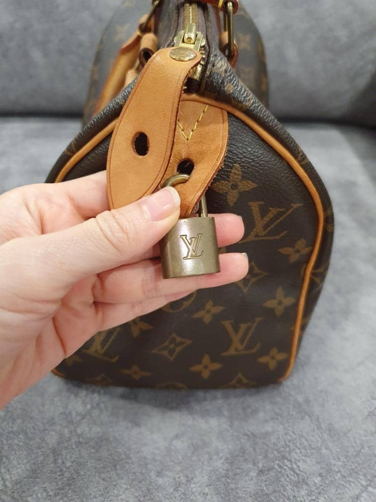 Vuitton Speedy 25 Monogram Canvas Handbag