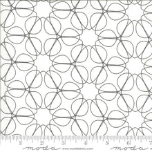 Load image into Gallery viewer, Moda Fabrics - Zen Chic Graphite Swirl