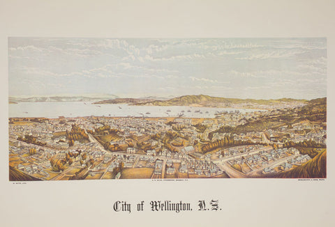 A2 Poster - City of Wellington, NZ