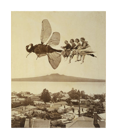 A2 Poster - Dragonfly Over Rangitoto