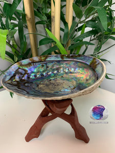 Smudge Abalone Shell / Bowl