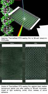 ThermalSeal RT Silicone Adhesive Sealing Film | 50uM Silicone Adhesive Sealing Film | Sealing Film for Real Time PCR