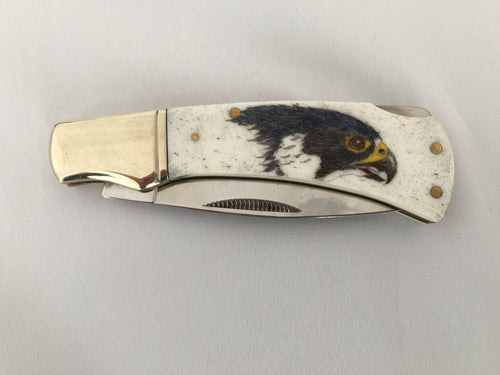 Peregrine Falcon Knife, scrimshaw on bone - The Highlight Gallery
