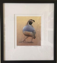 Load image into Gallery viewer, California Quail