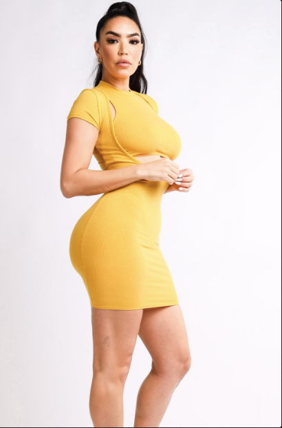 Crop Top Mini Dress Set (Mustard)