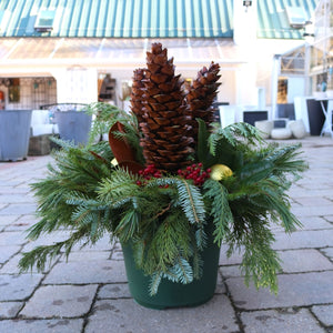 Holiday Drop-in Liner 12in Dancing Pine Cones
