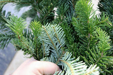 Load image into Gallery viewer, Evergreen Bunch Silver Fir