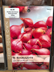 Shallot Set Onion Red Gourmet 5/Bag