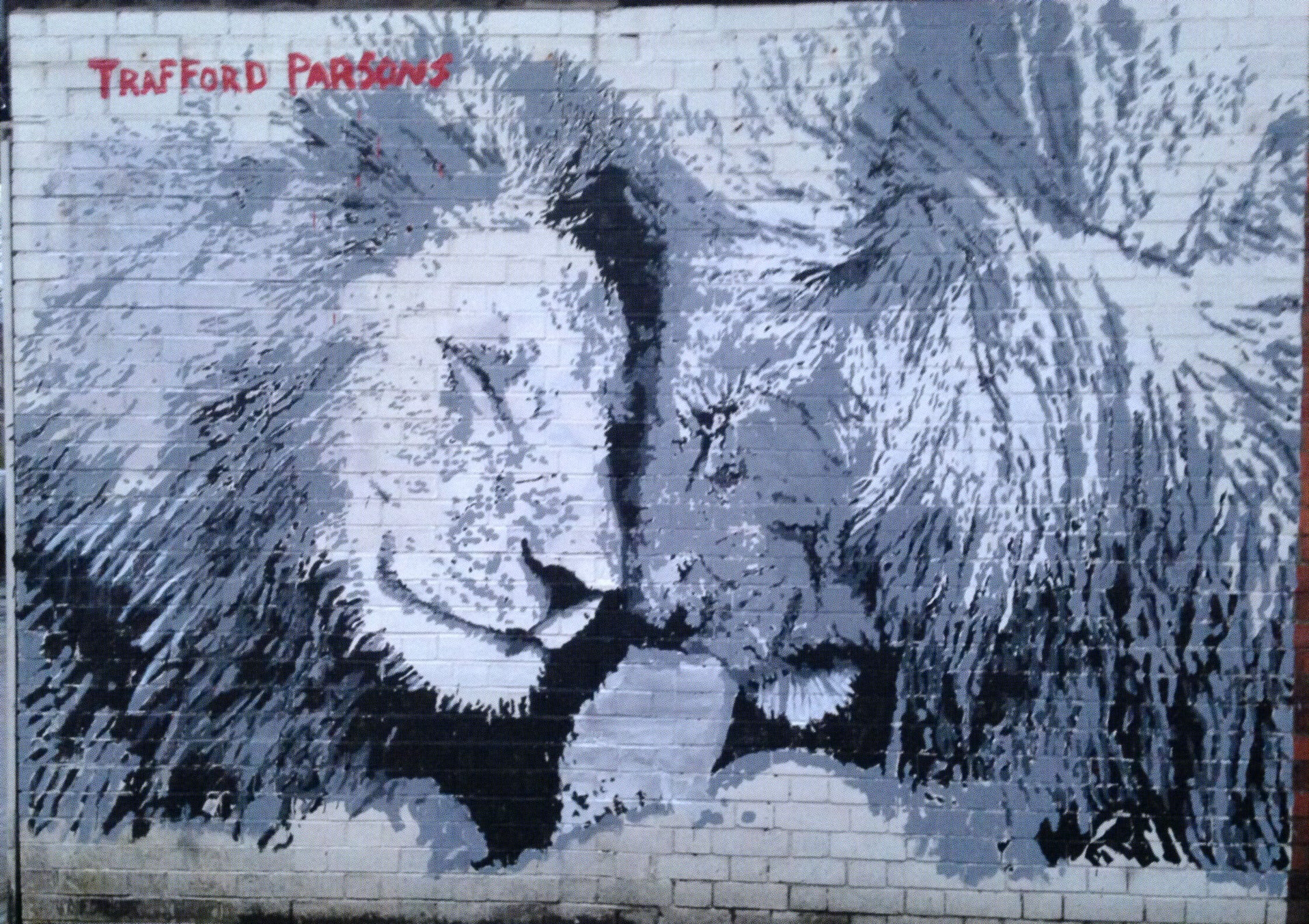 """Pride"" Lions painted on Burton Rd, Manchester"