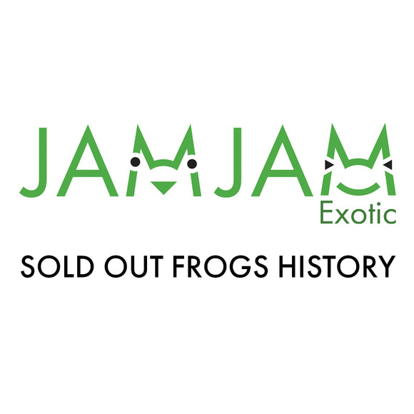 Sold out frogs
