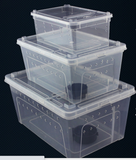 Z25 Reptile Plastic Ventilated Box (Various sizes L, M, & S)