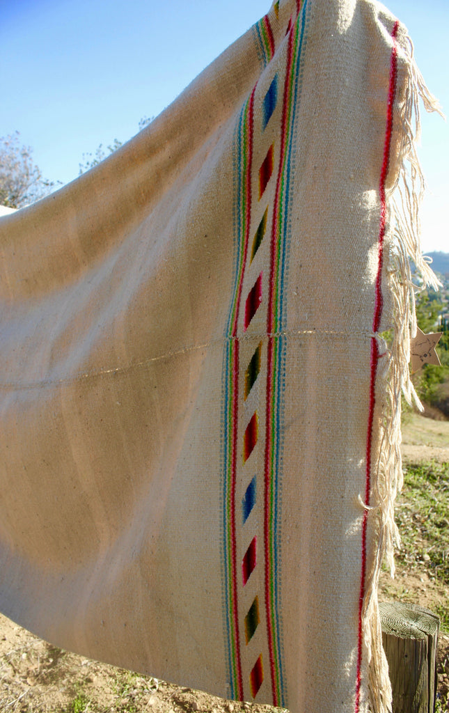 """Chama Path"" Mid-Century Handwoven Mexican Blanket"