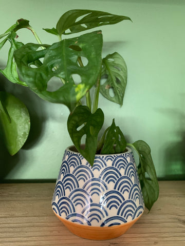 Small  Blue Wave planter