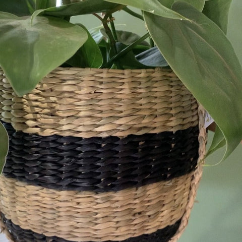 Seagrass Stripe Planter