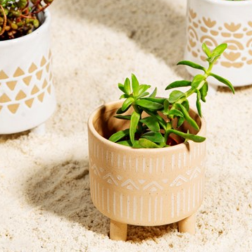 Sandy Stonewear & White Geo Leggy Planter