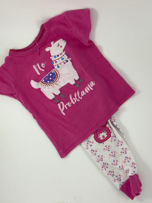 Girl's Outfit - Size 3t