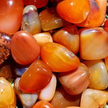 Load image into Gallery viewer, Carnelian (tumbled)