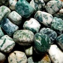 Load image into Gallery viewer, Tree agate (tumbled)