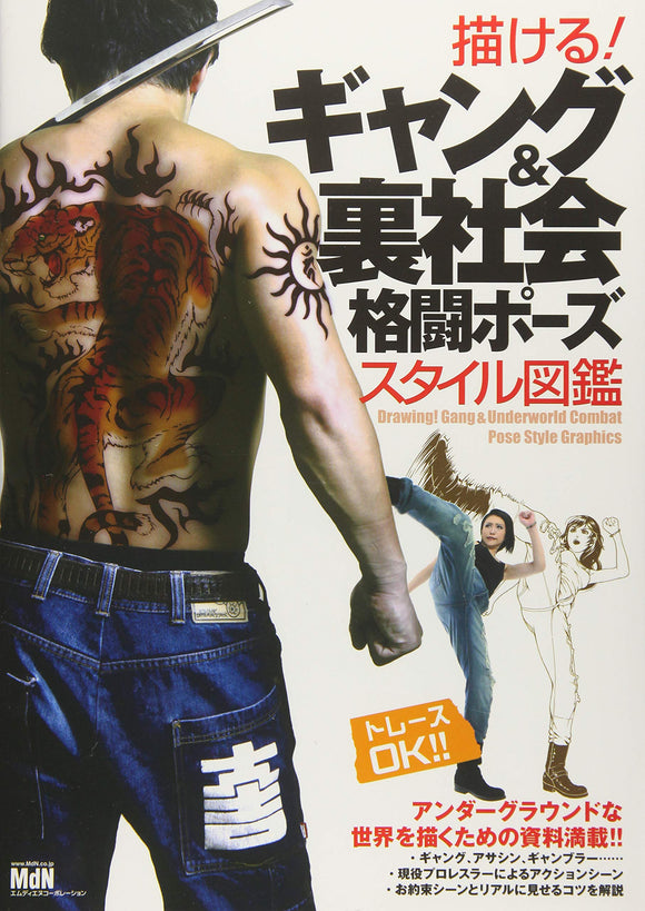 DRAW GANG & UNDERWORLD FIGHTING POSE STYLE PICTURE BOOK HC
